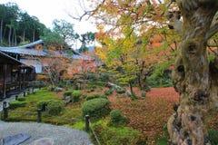 Листопад на виске Enkoji, Киото, Японии Стоковая Фотография
