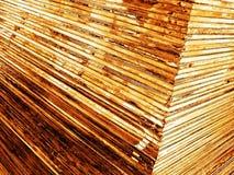 листы золота Стоковое Изображение RF