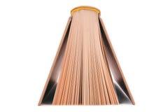 листы книги Стоковая Фотография RF