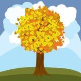 Листья апельсина осени дерева вектора Стоковая Фотография