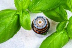 Листья базилика и малой бутылки масла на конкретной таблице Стоковые Фотографии RF