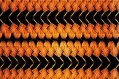 Листья Брайна сухие для предпосылки Стоковые Фотографии RF