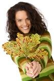 Листья вала осени и ся женщина Стоковые Фотографии RF