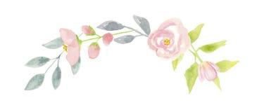 Листья весны свадьбы гирлянды мяты свода венка лета мака акварели Стоковое Изображение
