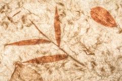 листья высушенные предпосылкой Стоковая Фотография