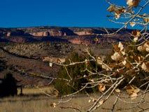 Листья в ноябре и красные скалы стоковое изображение