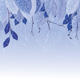 Листья в предпосылке зимы заморозка Стоковые Изображения