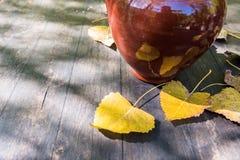 Листья глиняного кувшина и желтого цвета натюрморта осени Стоковая Фотография RF