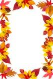 листья граници осени Стоковые Фотографии RF