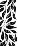 листья граници бесплатная иллюстрация