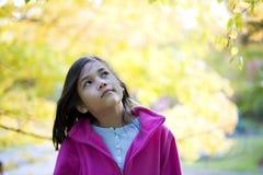 листья девушки осени смотря молод Стоковая Фотография