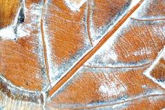 листья деревянные Стоковое фото RF