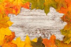 Листья желтого цвета на старых деревянных досках Стоковая Фотография RF