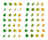 Листья желтого цвета значков Стоковая Фотография RF