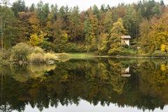Листья желтого цвета осени стоковая фотография rf