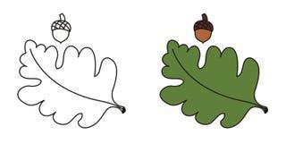 листья жолудя иллюстрация вектора