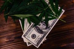Листья завода конопли и 100 долларовых банкнот на деревянном столе Стоковое фото RF