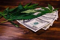 Листья завода конопли и 100 долларовых банкнот дальше сватают Стоковое фото RF