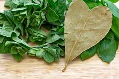 Листья залива сердца форменные Стоковое Изображение