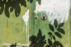 Листья затеняют на двери зеленого цвета Стоковая Фотография RF