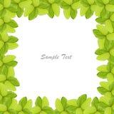 листья зеленого цвета граници Стоковое Фото
