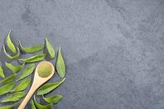 Листья зеленого цвета и порошок Стевии - rebaudiana Стевии Взгляд сверху стоковая фотография rf