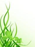 листья зеленого цвета травы клевера Бесплатная Иллюстрация
