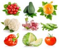 листья зеленого цвета установили овощи Стоковое Изображение