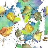 Листья зеленой и желтой березы осени Листва ботанического сада завода лист флористическая Безшовная картина предпосылки иллюстрация вектора