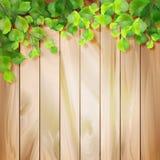 Листья зеленого цвета на деревянной текстуре Предпосылка вектора иллюстрация вектора