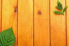 Листья зеленого цвета на предпосылке деревянного стола Взгляд сверху Стоковое фото RF