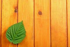 Листья зеленого цвета на предпосылке деревянного стола Взгляд сверху Стоковые Фотографии RF