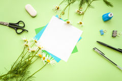 Листья зеленого цвета на предпосылке зеленого цвета цвета Стоковое Изображение