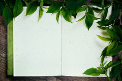 Листья зеленого цвета на пустом sketchbook Листья зеленого цвета рамки Представление Пустая тетрадь Тетрадь пробела времени весны Стоковое фото RF