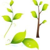 листья изображения ветви 3d Стоковые Изображения