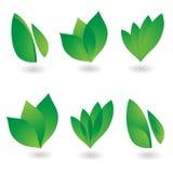 листья иконы Стоковая Фотография