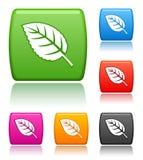 листья икон Стоковое Изображение