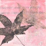 листья иллюстрации Стоковые Фото