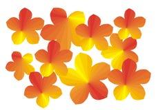 листья иллюстрации Стоковое Фото