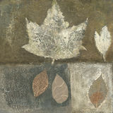 листья искусства Стоковое Изображение