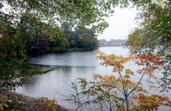 Листья и деревья осени окружают озеро Стоковая Фотография