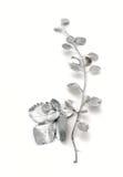 Листья и клубники барбариса хворостины стоковые фотографии rf