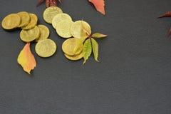 Листья и монетки на черной предпосылке Стоковая Фотография