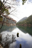 Листья и озеро осени в jiuzhaigou Стоковое фото RF