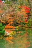 Листья и отражение цвета на виске Kinkakuji Стоковое фото RF