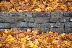 Листья и стена осени Стоковое фото RF