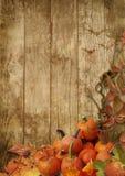 Листья и тыквы осени на деревянной предпосылке Стоковое Изображение RF