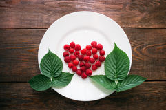 Листья и ягоды поленики Стоковое фото RF