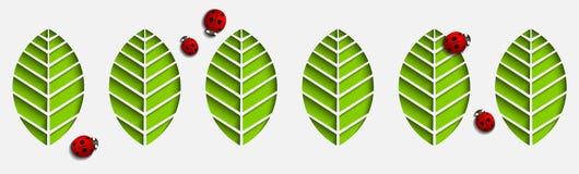 Листья и ladybugs бумаги вектора Абстрактный геометрический дизайн 3D с тенями падения Отрежьте вне на картине белой предпосылки  Стоковые Изображения