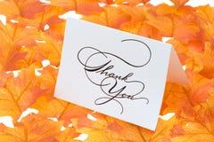 листья карточки благодарят вас стоковое изображение